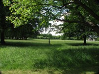 Dublin's Phoenix Park, the largest city park in the world