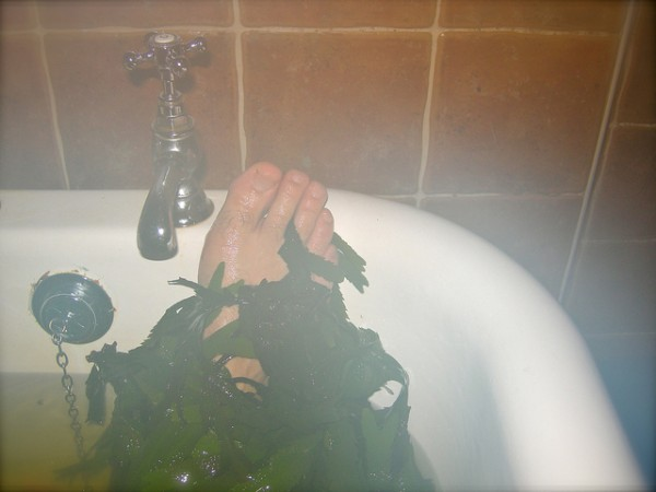 Seaweed  bath, ©IrishFireside/Flickr