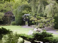Visiting Ireland, the Stud Tour and the Japanese Gardens
